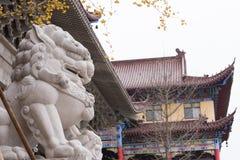 Lions en pierre devant le temple Image libre de droits