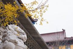 Lions en pierre devant le temple Images stock