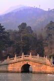 Lions en pierre sur le pont en pierre de voûte Photo libre de droits