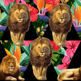 The lions and exotic flowers. A couple of lions and tropical flowers. Vector seamless pattern royalty free illustration