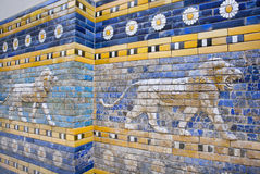Lions following on the hunt, patterned wall of  the historical city of Babylon Royalty Free Stock Photos