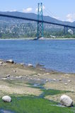 Lions Gate Bridge Royalty Free Stock Photography