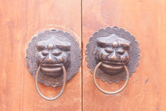 Lions Gate on the wood door. Stock Images