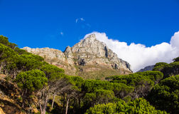 Lions head, Cape town. Lions head, Atlantic ocean, Cape town, Table Mountain National Park, South Africa stock photo