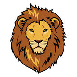 Lions head Royalty Free Stock Photo