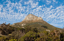 The Lions Head Mountain Cape Town Royalty Free Stock Images