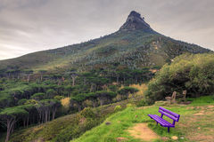 Lions Head Mountain. In Cape Town, South Africa Royalty Free Stock Photo