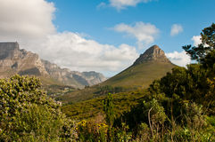 Lions Head part of Table Mountain Royalty Free Stock Images