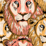 Lions heads seamless pattern. Vector illustration on black background. Hand drawn heads of lions seamless pattern. Vector illustration on black background stock illustration