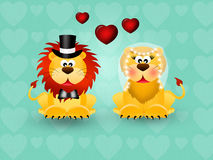 Lions in love Stock Images