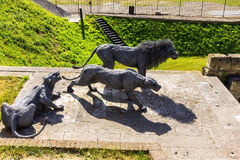 Lions made from wire mesh by Kendra Haste at the at the bottom of a dried-up moat in front of the Middle Tower. Tower of London. Royalty Free Stock Photo
