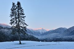 The Lions Mountain Peaks at winer sunrise Stock Images