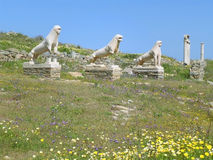 Lions of the Naxians, Ancient Lion Statues and the Sanctuary at the Terrace of the Lions, Archaeological Site of Delos, Greece. Lions of the Naxians, Ancient stock photo
