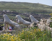 Lions of the naxians, ancient lion statues symbol of Archaeological Site of Delos, Delos Island, Mykonos. Greece royalty free stock photo