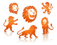 Lions Silhouettes set. Lions and lions heads Silhouettes set Stock Photography