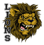 Lions Sports Mascot. An illustration of a lion sports mascot head with the word lions Royalty Free Stock Photo