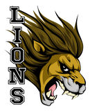 Lions Sports Mascot. An illustration of a lion sports mascot head with the word lions Stock Photo