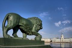 Lions sur le pilier d'étape à St Petersburg Photos libres de droits