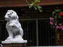 lions of vancouver --eastvan-photowalk-vancouver-em10-75-300mm-20150517-P5170049.jpg Stock Photo
