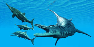 Liopleurodon anfaller ichthyosaurusen stock illustrationer