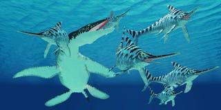 Liopleurodon attacks Eurhinosaurus Stock Photos