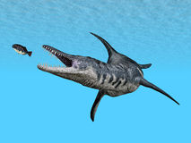 Liopleurodon Royalty Free Stock Photo