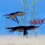 Liopleurodon Marine Reptile Royaltyfria Bilder