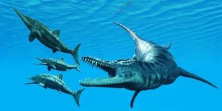 Liopleurodon nimmt Ichthyosaurus in Angriff Stockbilder