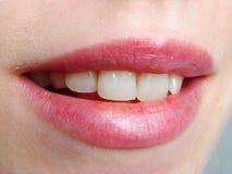 Lip. Thin-lip in the all photo stock image