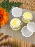 Lip balm with honey. Homemade lip balm with honey stock photos