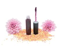 Lip gloss with brush isolated on white background Royalty Free Stock Photography
