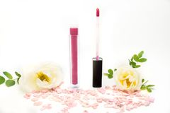 Lip gloss with brush isolated on white background Stock Images