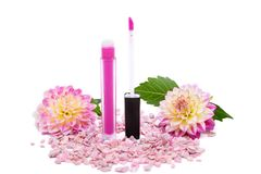 Lip gloss with brush isolated on white background Stock Image
