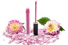 Lip Gloss Pink. On a white background with flowers Royalty Free Stock Images