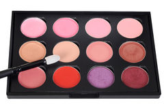 Lip makeup palette with brush Royalty Free Stock Photos