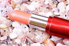 Lip stick on seashell background Stock Image