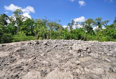 Lipad-Schlammvulkan, Sabah Borneo Lizenzfreies Stockbild