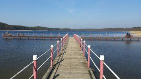 Lipczyno Wielkie jezioro Zdjęcie Stock