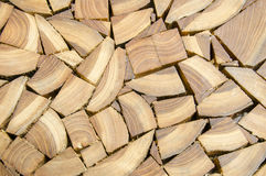 A lipe of cut stump log texture Stock Images