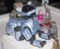 Lipetsk, Federação Russa 16 de janeiro de 2018: Robô modelo na exposição dos robôs na cidade de Lipetsk Fotos de Stock