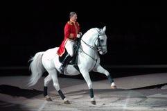 Lipizzaner Stallions-Erscheinen Lizenzfreie Stockbilder