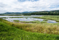Lipno water reservoir with hills on the background Stock Photo