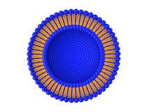 Liposome Bi-layer Structure 3D Illustration Stock Photography