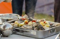 Lipovan Fish Borsht Stock Image