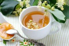 lipowa herbata Zdjęcie Royalty Free