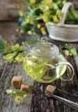 Lipowa herbata i kwitnąć lipową gałąź Zdjęcia Royalty Free