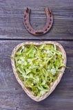 Lipowi okwitnięcia w sercu kształtowali kosz z podkową Fotografia Stock