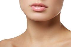 Lippe-Glanz Zutreffen Lipgloss Lippenstift lizenzfreie stockfotos