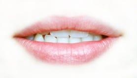 Lippen Lizenzfreies Stockfoto