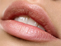 Lippen Стоковое Фото